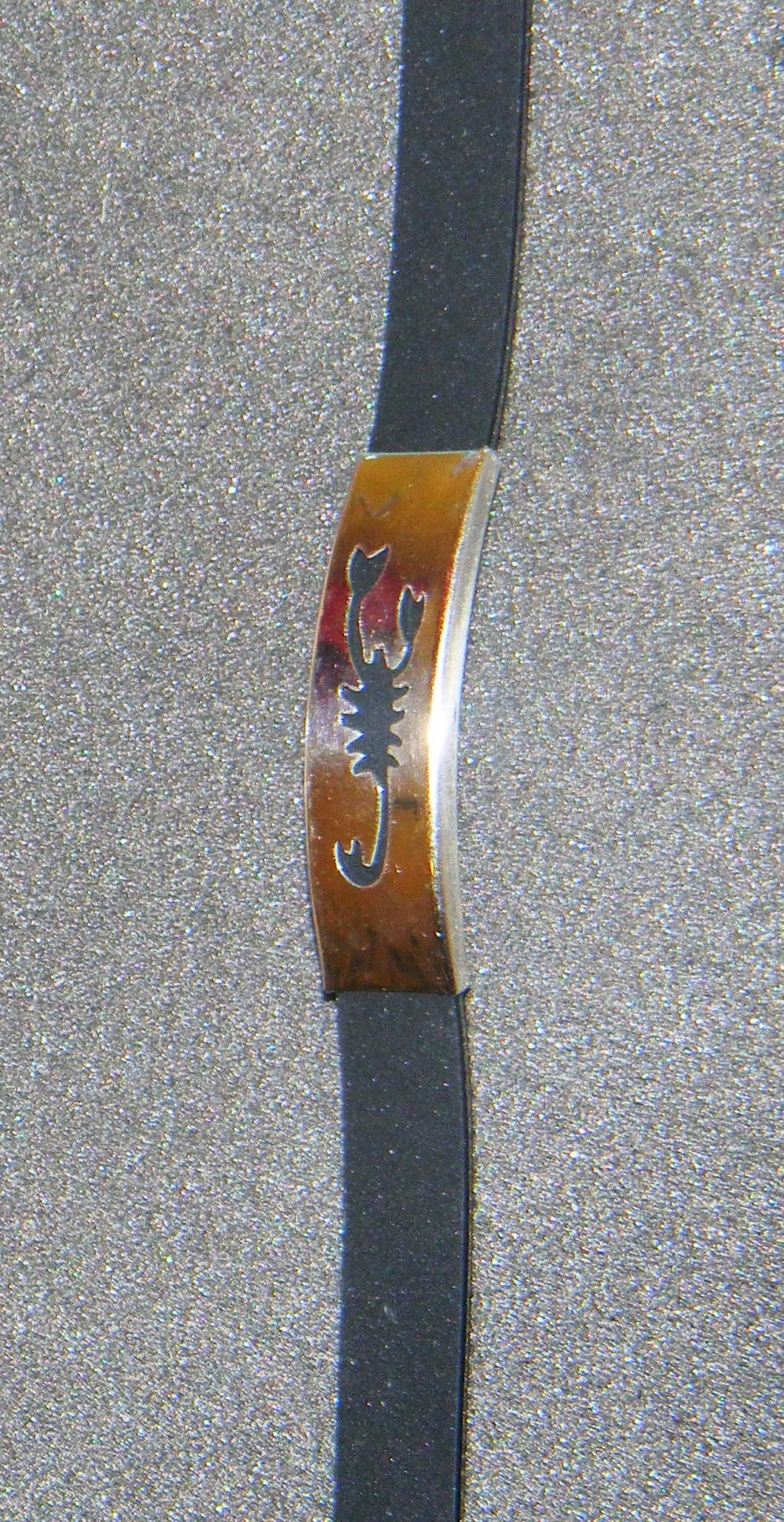Bsnscorpion 1
